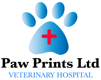 Tulsa's Best Veterinary Hospital